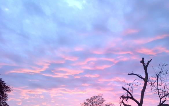 bubblin clouds